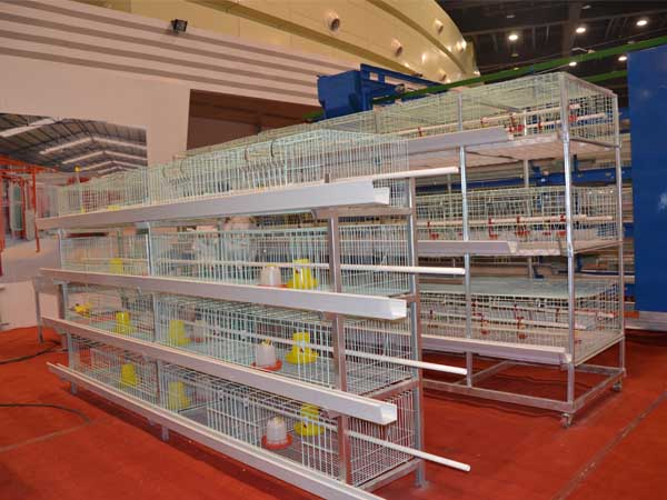 baby broiler cage