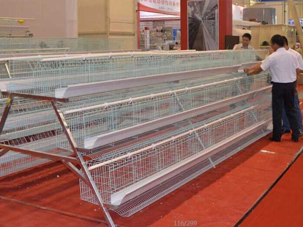 broiler baby chicken cage