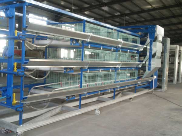 poultry feeding equipment