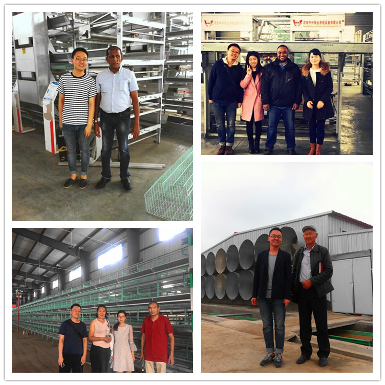 poultry farming system