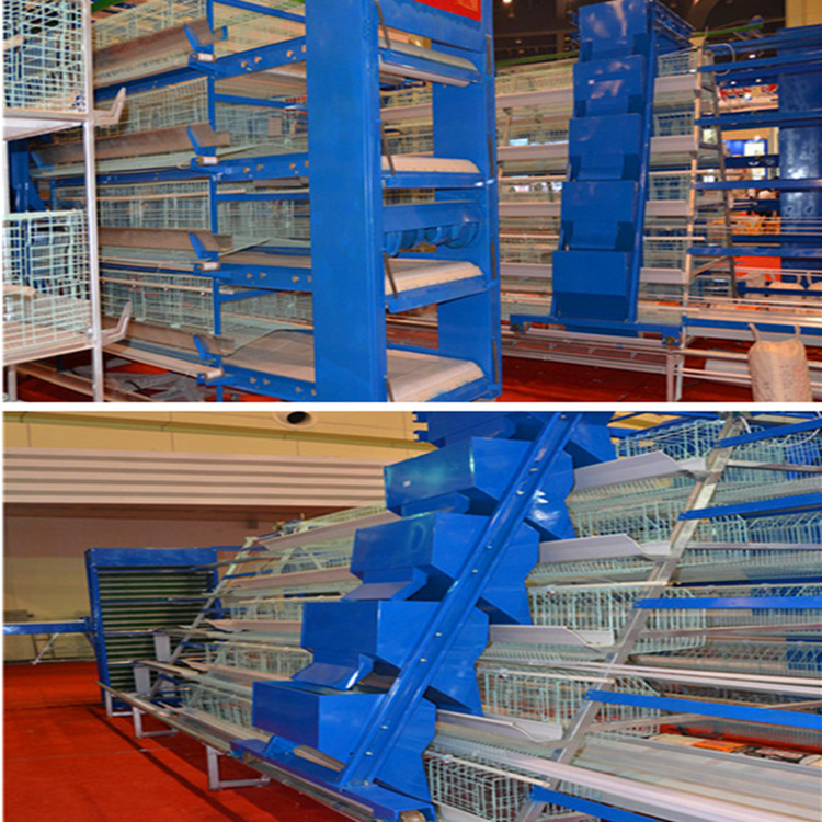 battery cages for sale in Livi Machinery