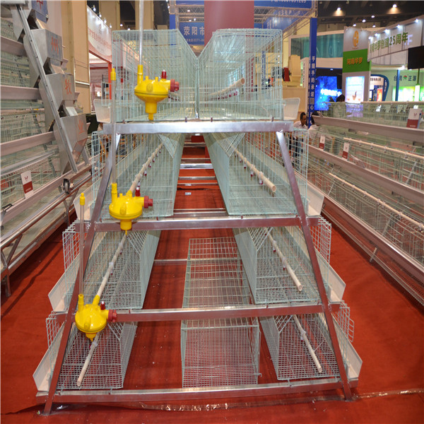 A-TYPE LAYER CHICK CAGE