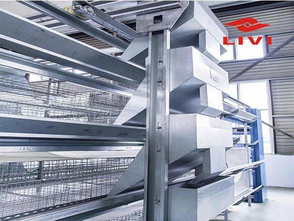 Livi poultry farm equipment with automatic poultry feeding machine can increase the effective of poultry breeding.