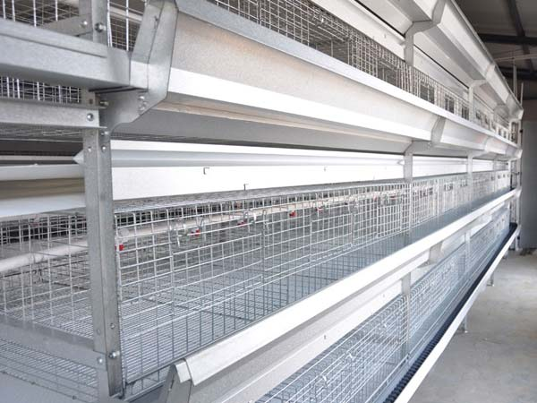stacked broiler cages for sale in Livi Mchinery.