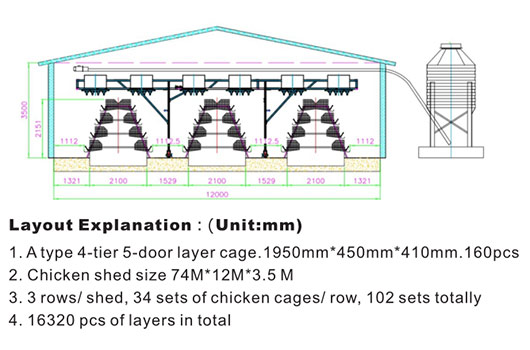 Livi chicken cages dimensions are suitable for your chicken farms