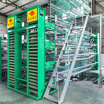Used poultry farming equipment of layer cages for sale In South Africa