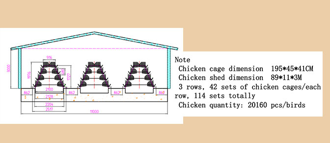Ghana poultry farming industry can raise the chicken quantity for about 20,000 as a conference.